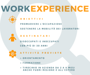INFOGRAFICA WORK EXPERIENCE 2018